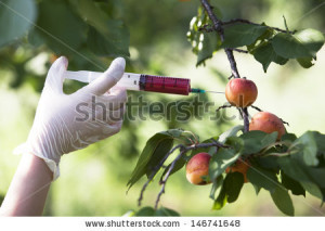 stock-photo-genetically-modified-fruit-
