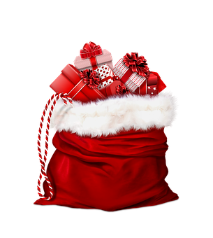 bag-for-gifts-2927962__340